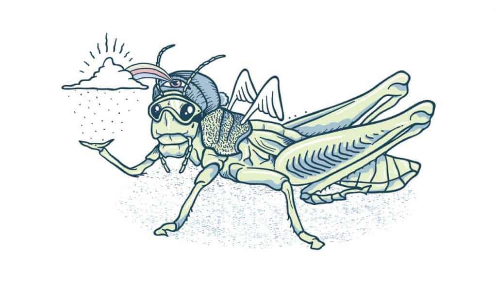 The Grasshopper – The Latest Snow Forecast