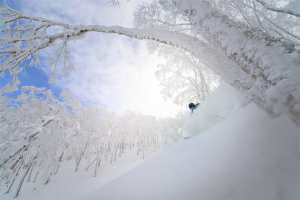 Rusutsu is a powder paradise.