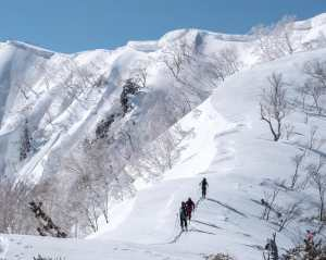 There has been plenty of sunshine in Japan over th east two weeks - some reckon too much, but a tour into the Hakbua backcountry has been worth the effort. However, some sno wis finally on the way. Photo: hakubabackcountrytours