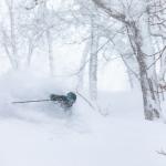 Consistent snowfalls have been topping up Niseko over the past week. Photo: Matt Wiseman / Niseko Photography