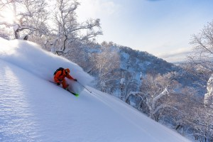 It's now even easier to access incredible conditions like this: Photo: Furano