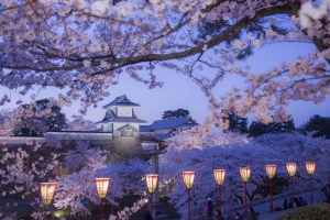 This particular location – Kanazawa Castle – is admittedly not making the following list by virtue of it not being at all 'lesser known'. But as it would be doing Kanazawa a disservice not to include it all, here it is in all of its cherry blossom (Sakura) glory. Photo:: Kanazawa City
