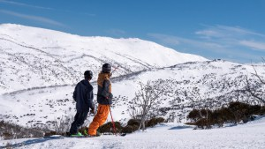 The base slookjign good after last week's snowfalls, currently sitting at 225cms above 1800 metres. Photo: Perisher