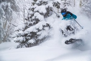 It was another early season powder day in Aspen yesterday and blah blah was right amongst it. Photo: Tyler Wilkinson-Kay