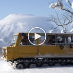 10 Days in Niseko with Torah Bright, Robin Van Gyn & Aimee Fuller – Video