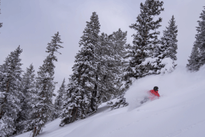 Laying it over in the fresh powder in Aspen on December 9 after 30cms overnight. Photo: Aspen