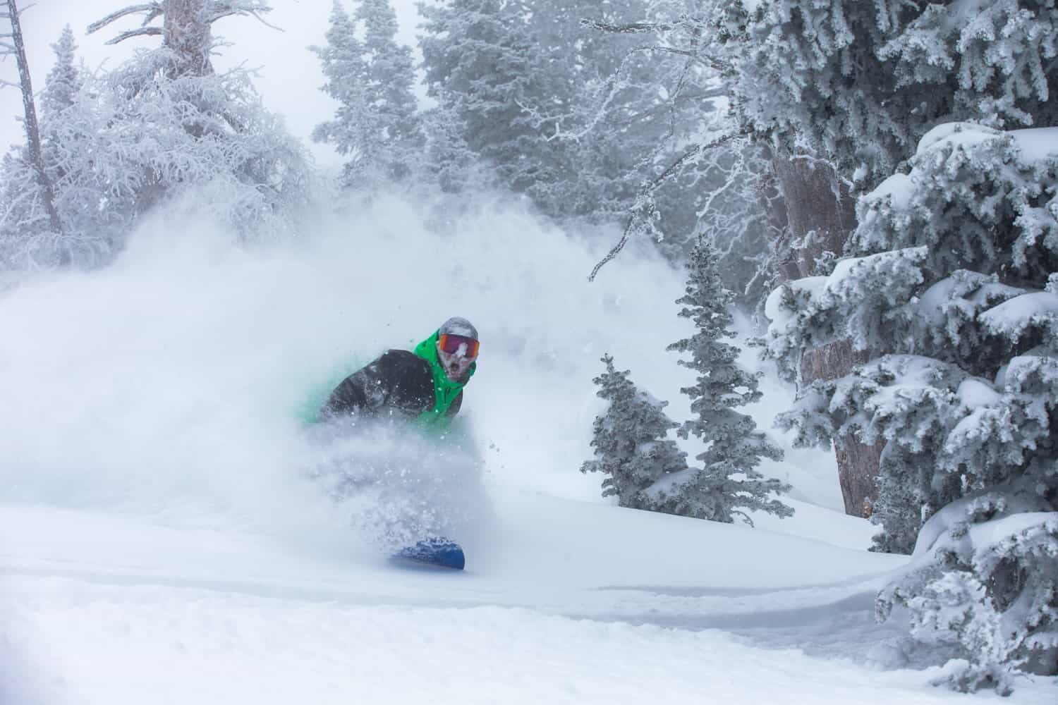 World Snow Wrap, January 17 - Big Totals For Whistler and Jackson, A Few Snowfalls In Japan, Snow On The Way For Europe
