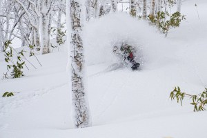Regular storms have seen big improvement this month with a few epic powder days on both Honshu and Hokkaido. Toshiba Kasuga, getting the goods somewhere in Hokkaido last week. Photo: Oyuki
