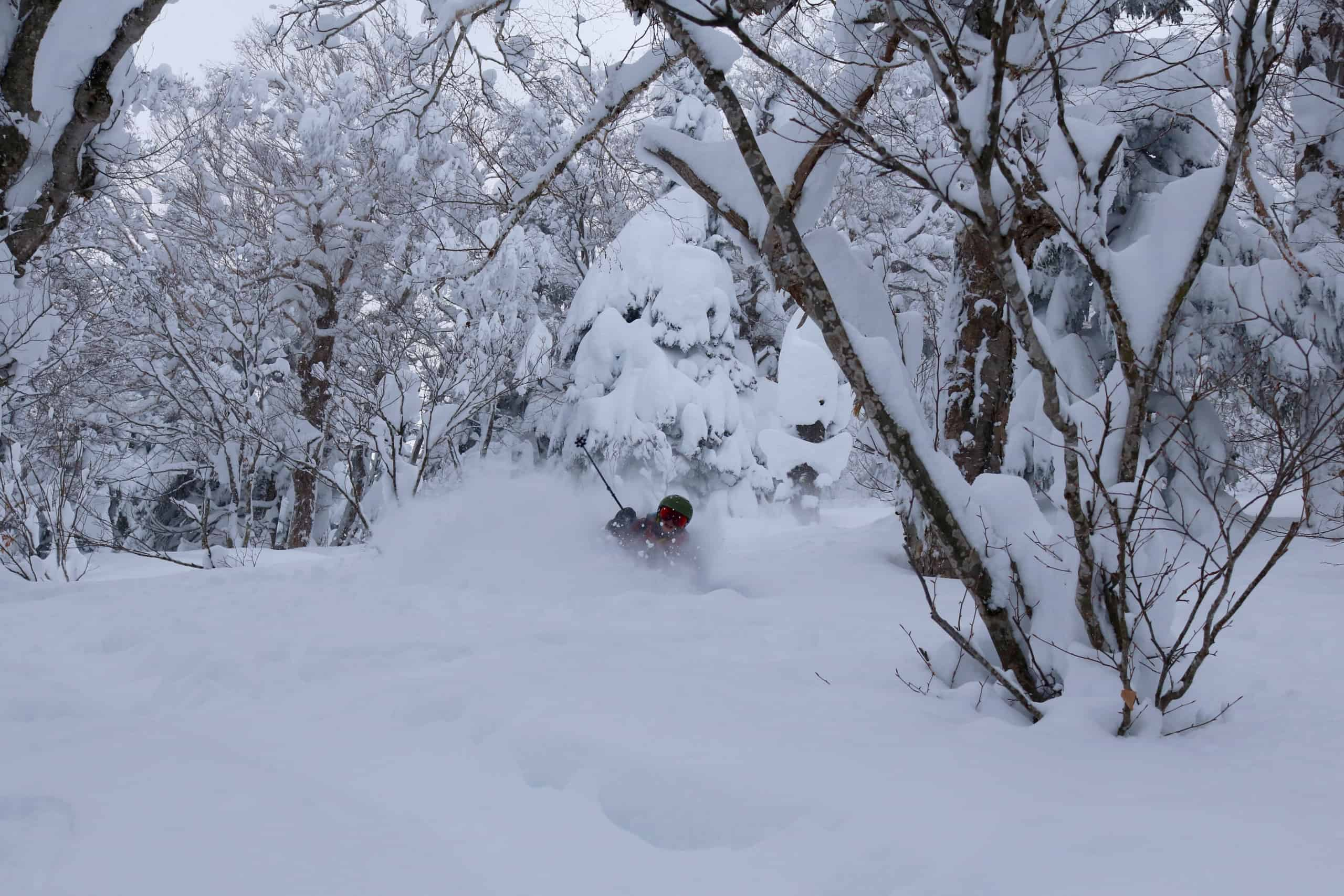 Destinations - Iwate Prefecture, One of Japan's Lesser-Known Regions For World-Class Snow