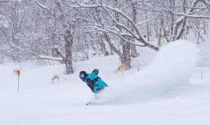 A nice reset in Niseko last night with 10cms turning onside powder turns today. Lachlan Brookes finding throng a dry plume in Niesko this morning. Photo: Rhythm Japan