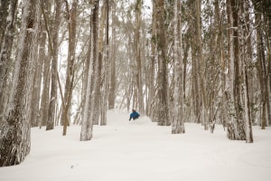 When you ar not from Buller, the first thing you do when skiing Buller is ski down into the Wooly Butts. This magical area is like no-where else on Earth. Skier: Coen Bennie-Faull