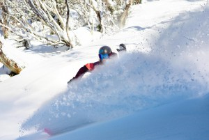 Torah Bright on a bluebird powder day last winter. Climate drivers are pointing to above average snowfalls this winter, so we could see more days like this. Richie Carroll, Thredbo. Pe