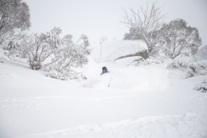 Powder ruiners i Thredbo yesterday after 15cms topped up with dry wind-blown snow. Photo: Thredbo