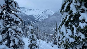The  Rogers Pass nbacnmoutyr near Revelstoke earlier this week. Photo: TJ Balon