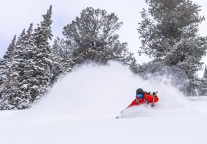 Quality Utah powder - always a highlight for any skier or snowboarder.