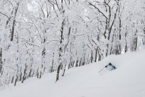 Drew Jolowizc deep in the trees at Ani last February. Picture: Dylan Robinson