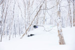 Louis Zink, on a classic Shig powder day in the trees. Photo: Jimmy Wacher