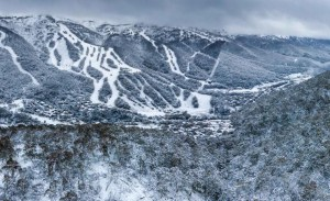 Thredbo looking good this morning. All resorts reported around 10cms in the past 24 hours, but a lot more snow is expected by tomorrow morning. Photo: Thredbo