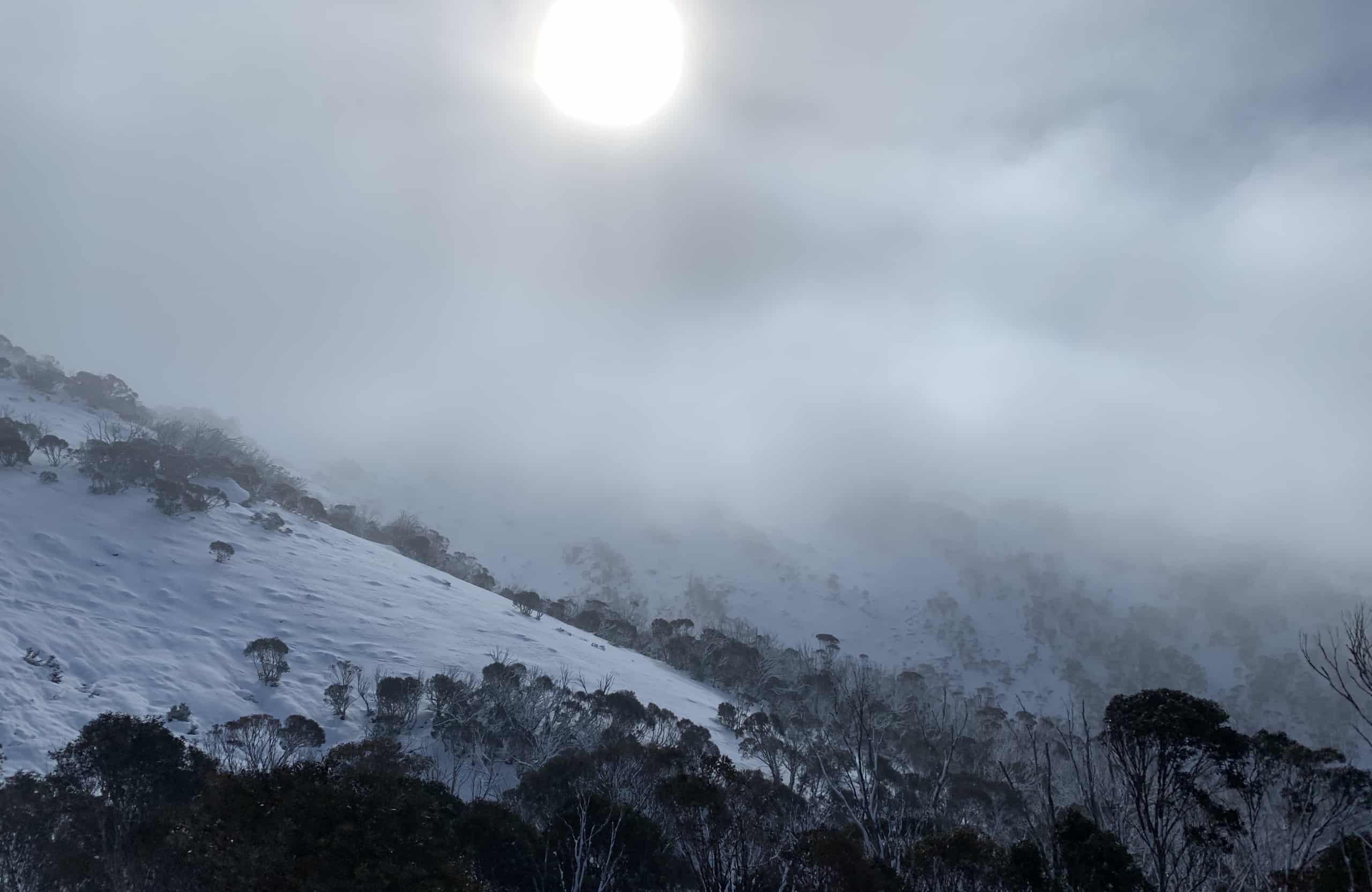 Australian Snow Forecast, Friday June 18